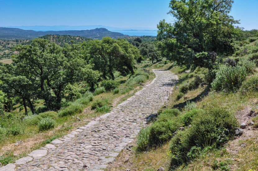Macedonian Road